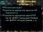 muse datacube creation 1