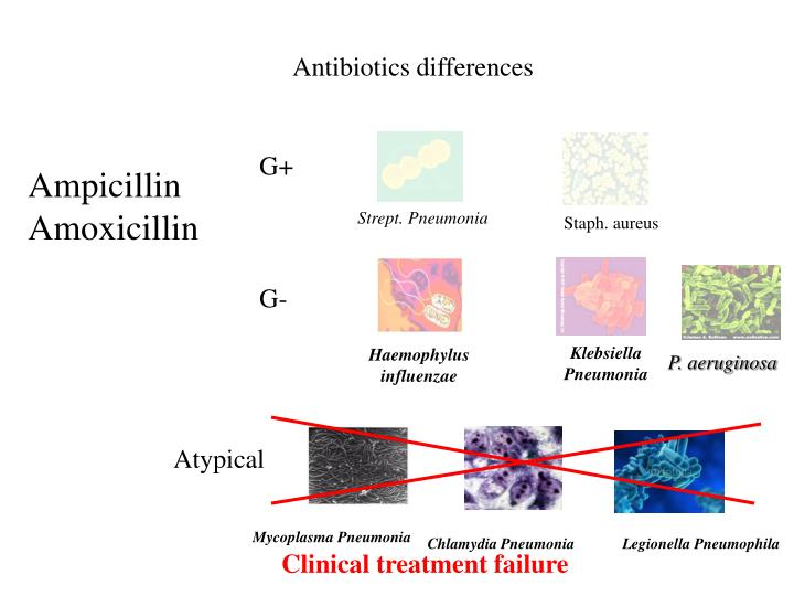Antibiotics differences
