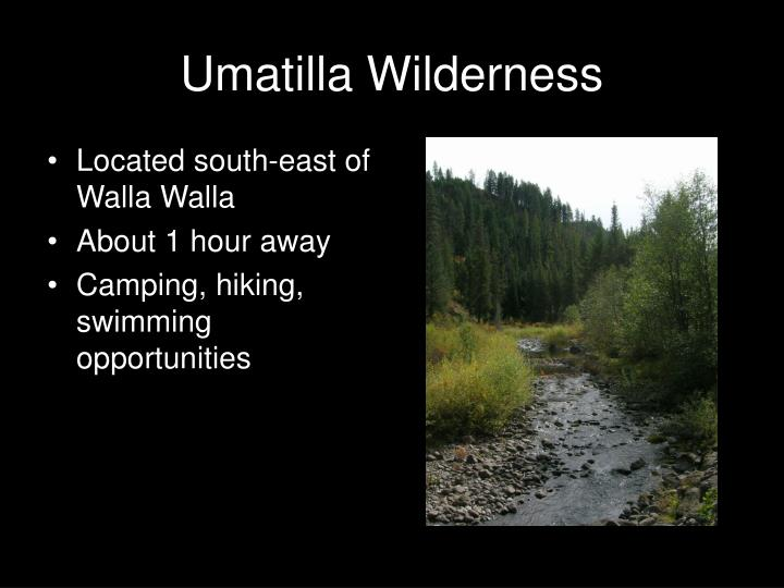 Umatilla Wilderness