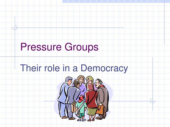 pressure groups n.