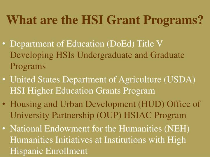 What are the HSI Grant Programs?