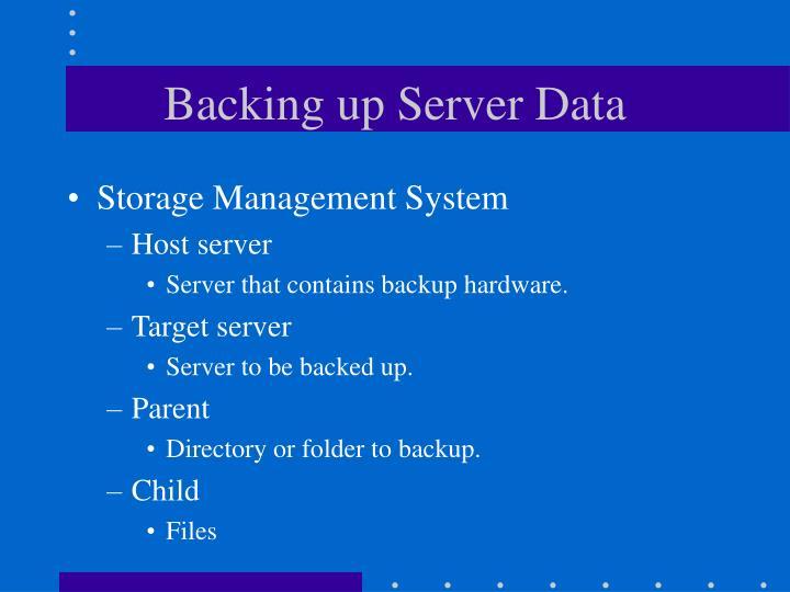 Backing up Server Data
