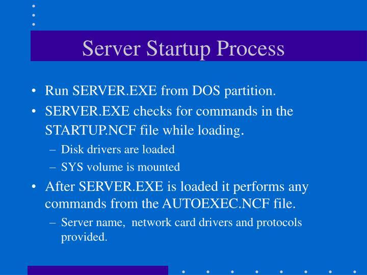 Server Startup Process