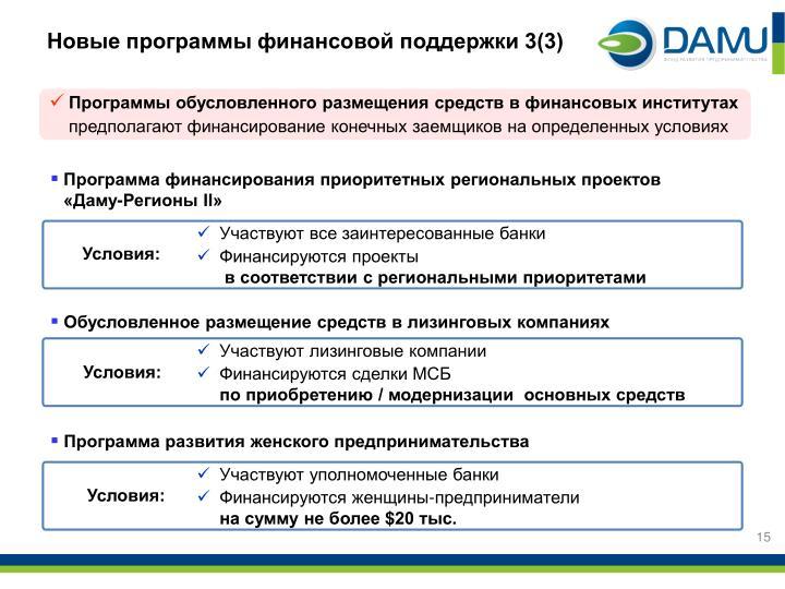Новые программы финансовой поддержки 3(3)