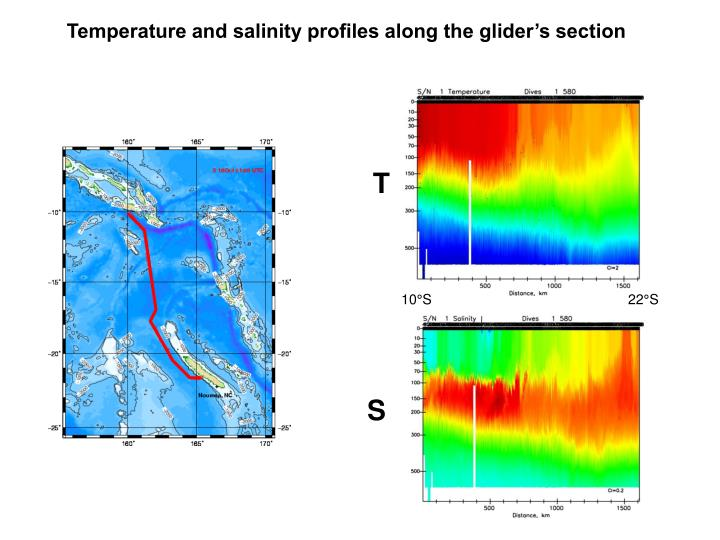 Temperature and salinity profiles along the glider's section
