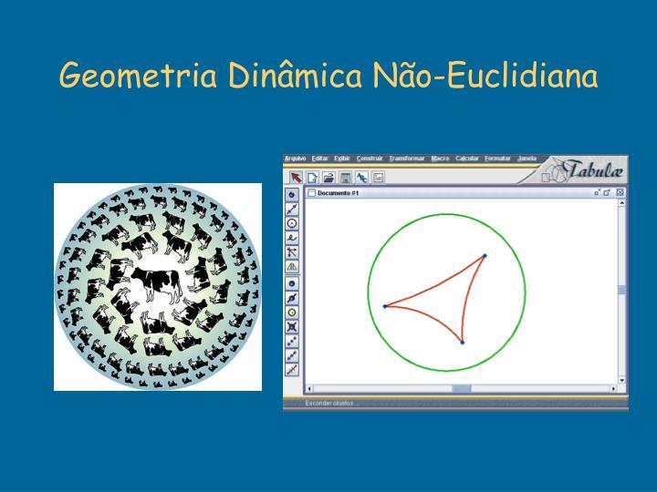 Geometria Dinâmica Não-Euclidiana
