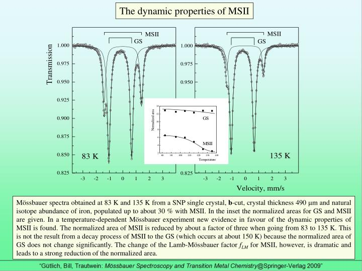 The dynamic properties of MSII