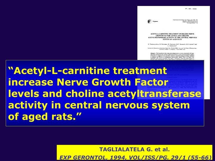 """Acetyl-L-carnitine treatment increase Nerve Growth Factor levels and choline acetyltransferase activity in central nervous system of aged rats."""