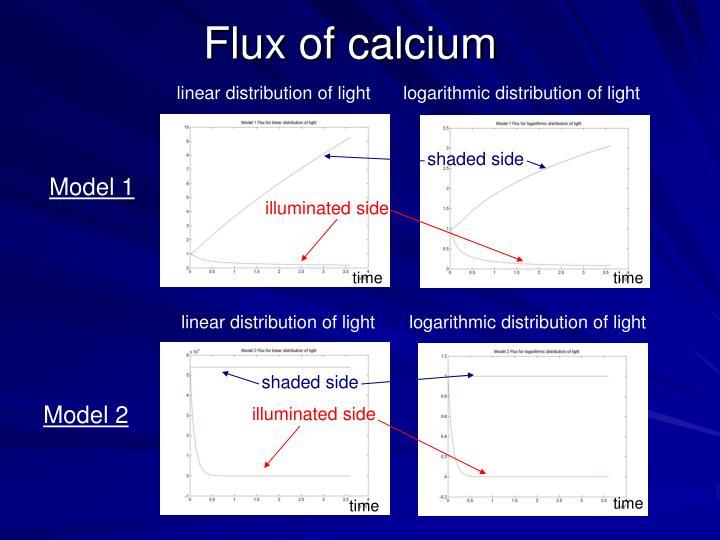 Flux of calcium