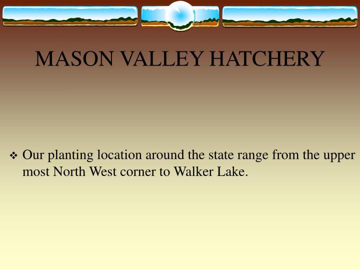 MASON VALLEY HATCHERY