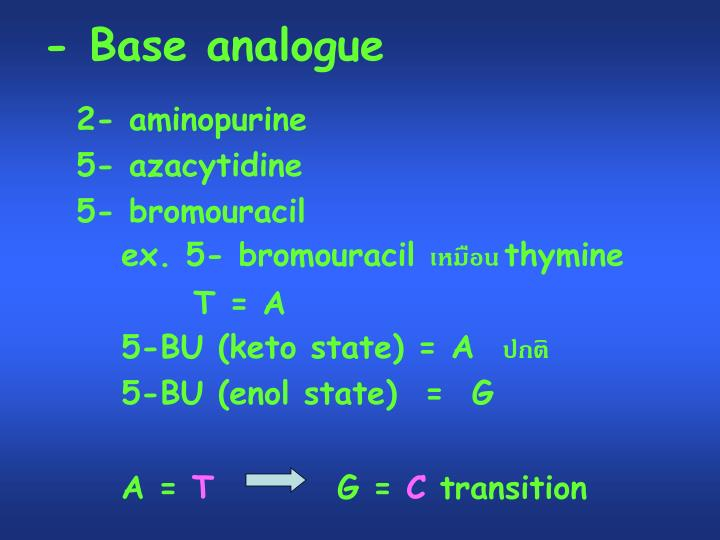 - Base analogue