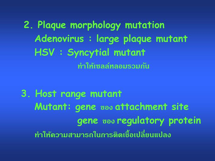2. Plaque morphology mutation