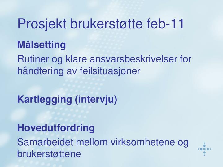 Prosjekt brukerstøtte feb-11
