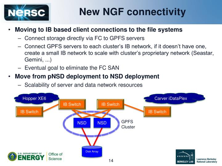 New NGF connectivity