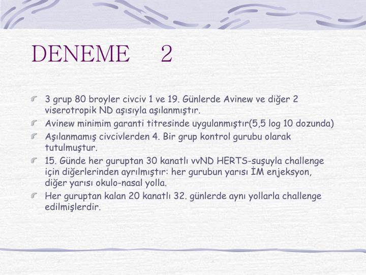 DENEME    2