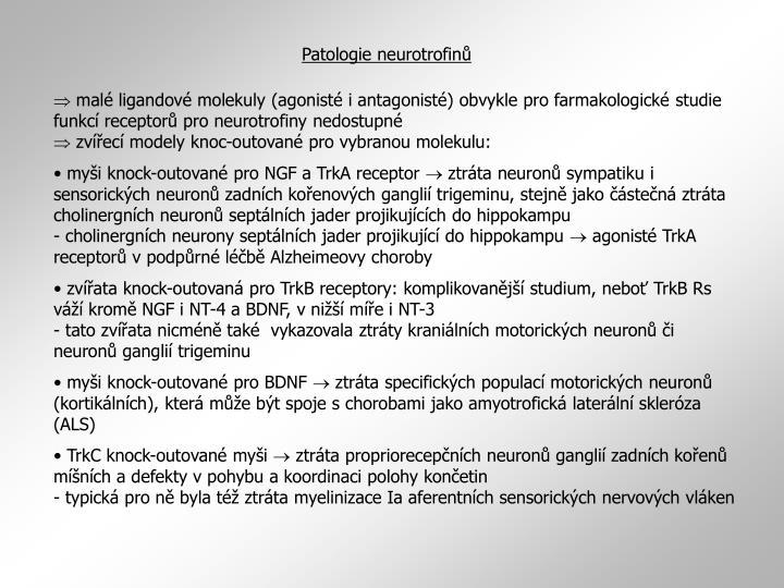 Patologie neurotrofinů