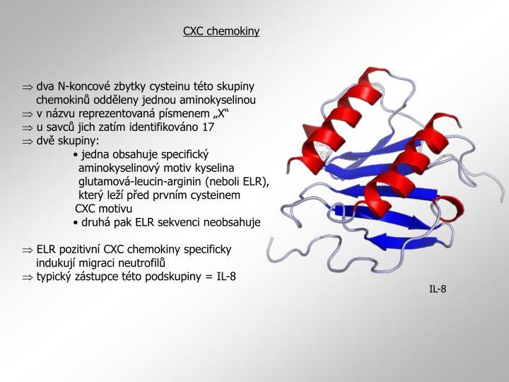 CXC chemokiny