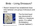 birds living dinosaurs