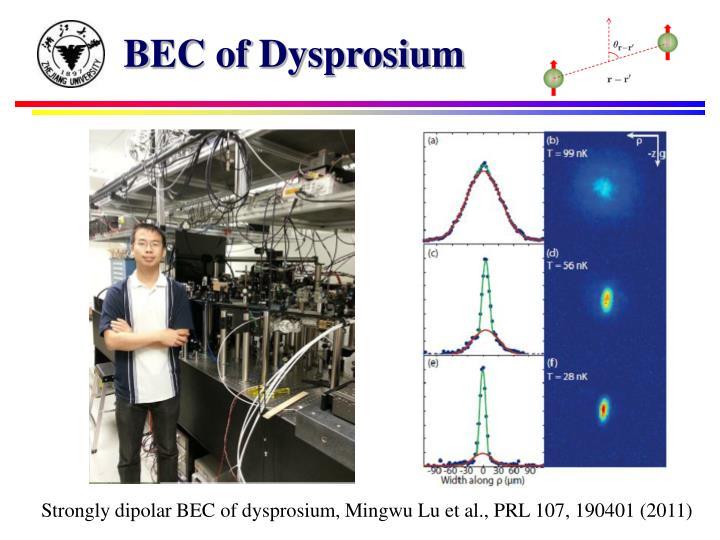 BEC of Dysprosium