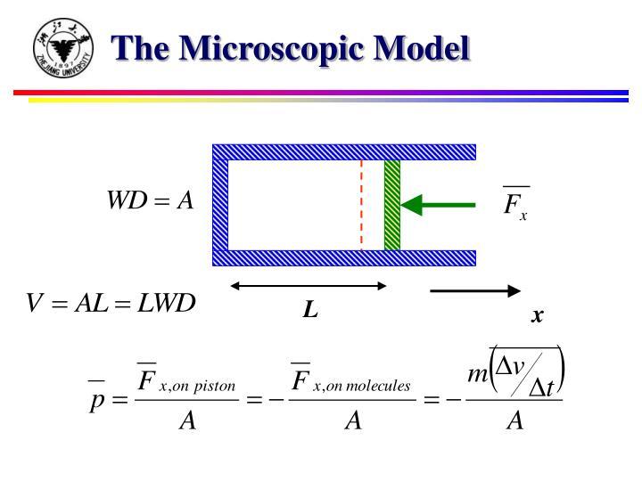 The Microscopic Model