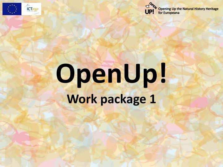 Openup work package 1
