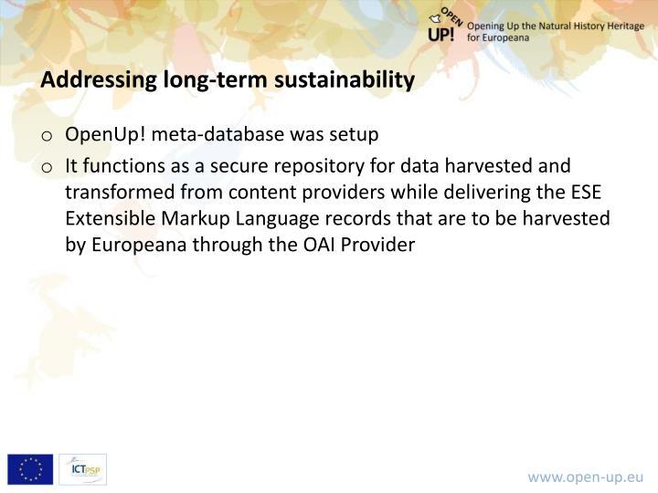 Addressing long‐term sustainability