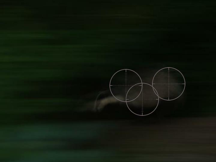 Shooting a fleeing badger