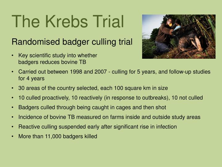The Krebs Trial