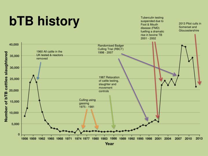 bTB history