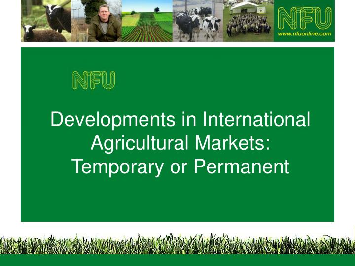 developments in international agricultural markets temporary or permanent n.