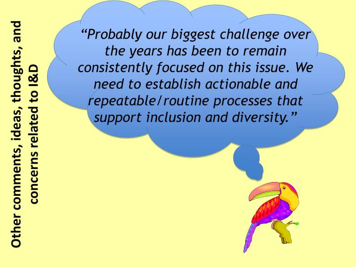 """Probably our biggest challenge over the years has been to remain consistently focused on this issue. We need to establish actionable and repeatable/routine processes that support inclusion and diversity."""