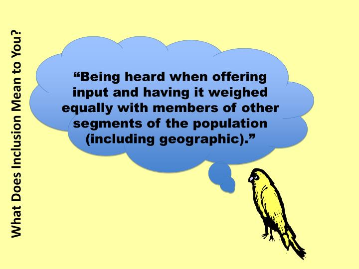 """Being heard when offering input and having it weighed equally with members of other segments of the population (including geographic)."""