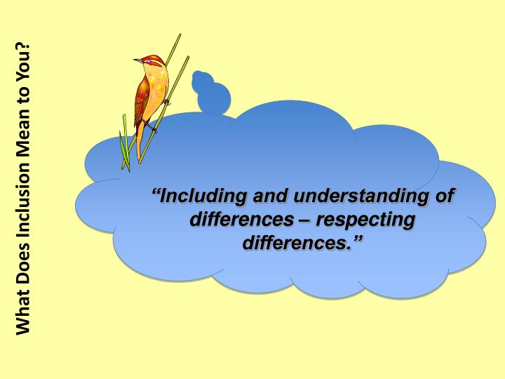 """Including and understanding of differences – respecting differences."""