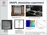 dnapl dissolution experiment