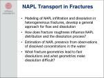 napl transport in fractures1