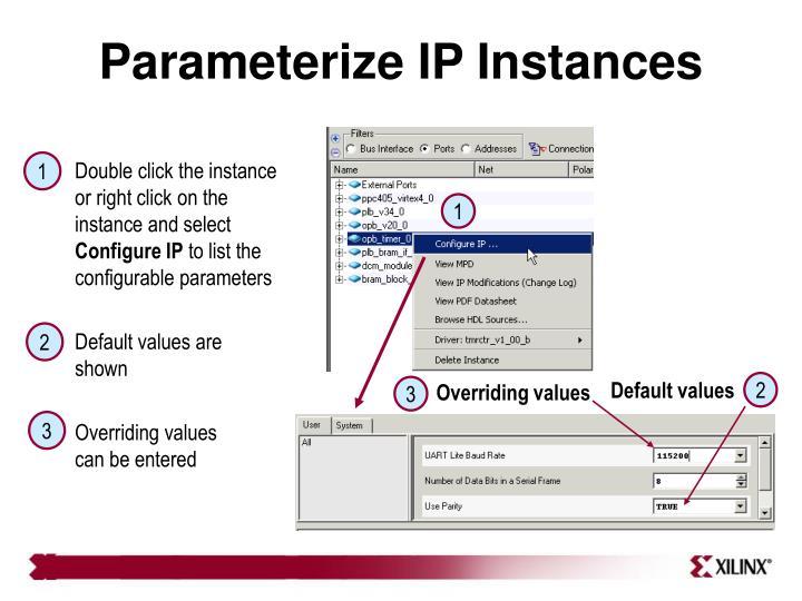 Parameterize IP Instances