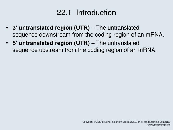 22 1 introduction