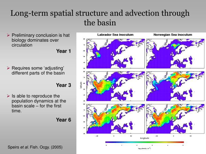 Long-term spatial structure and advection through the basin