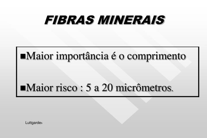 FIBRAS MINERAIS