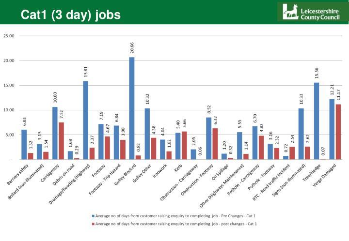 Cat1 (3 day) jobs