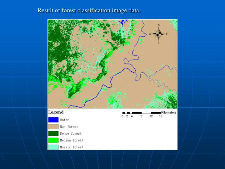 Result of forest classification image data.