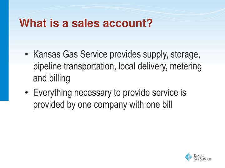What is a sales account?