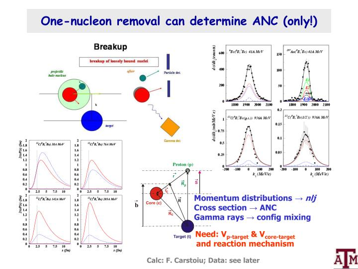 One-nucleon removal can determine ANC (only!)