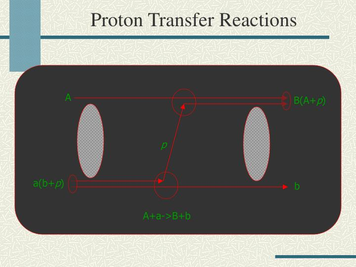 Proton Transfer Reactions