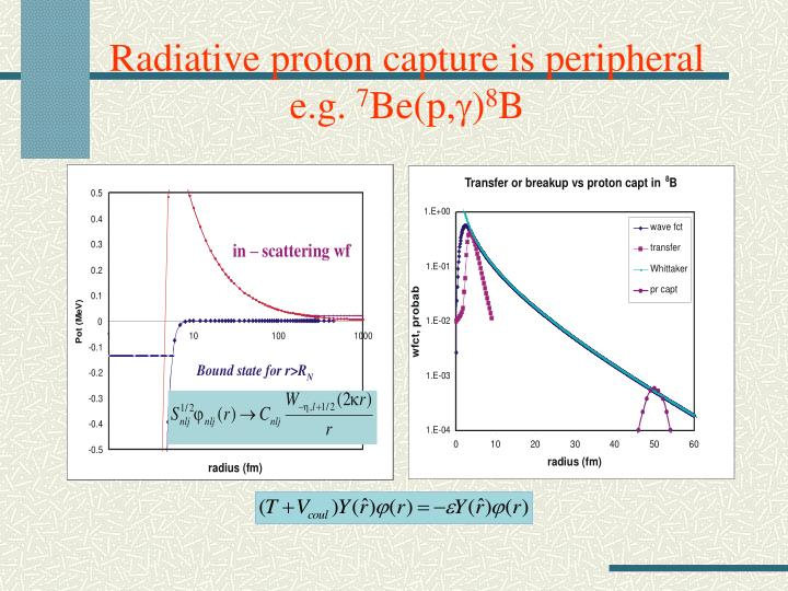 Radiative proton capture is peripheral e g 7 be p g 8 b