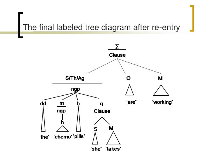 The final labeled tree diagram after re-entry