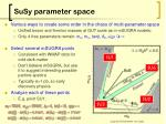 susy parameter space