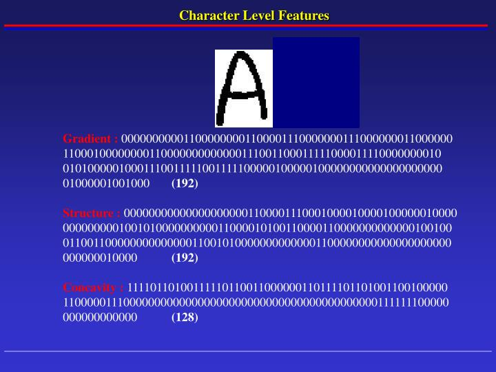 Character Level Features