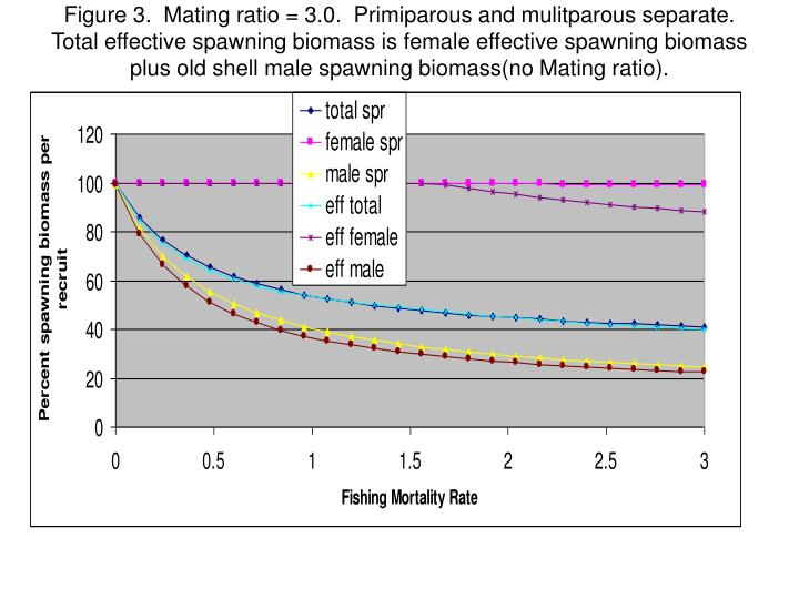 Figure 3.  Mating ratio = 3.0.  Primiparous and mulitparous separate.  Total effective spawning biomass is female effective spawning biomass plus old shell male spawning biomass(no Mating ratio).