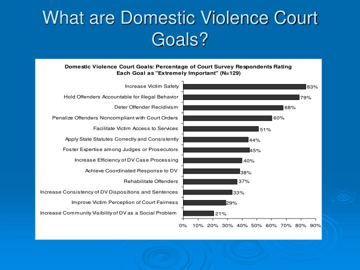 What are Domestic Violence Court Goals?